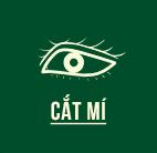 fh4-cat-mi-ac