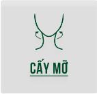 fh4-cay-mo