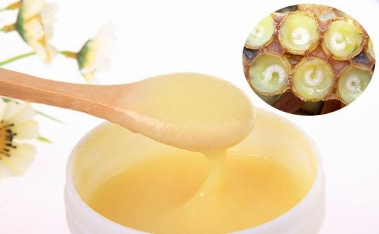 Sữa ong chúa chứa nhiều chất dinh dưỡng đặc biệt từ mật hoa và chất đạm tiết ra từ tuyến họng của ong thợ