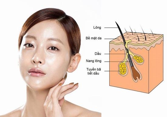 Da dầu thường có biểu hiện sáng bóng và sờ thấy nhờn, lại thêm da nhạy cảm, dễ kích ứng sẽ khiến bạn vô cùng vất vả khi chăm sóc