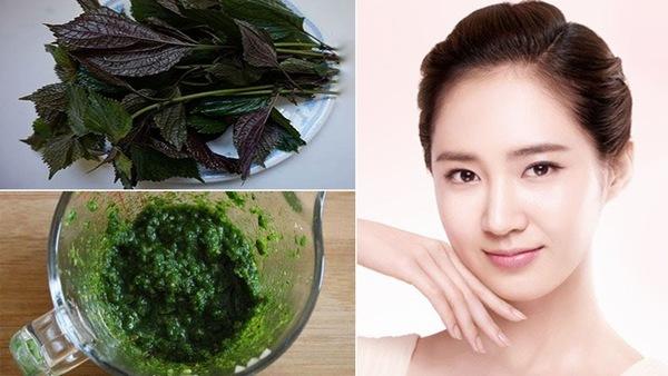 Chỉ 15 phút cho 1 lần đắp mặt nạ lá tía tô có thể giúp làn da của bạn trắn hồng hơn nhiều lần