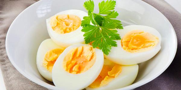 Trứng gà rất tốt cho sức khỏe