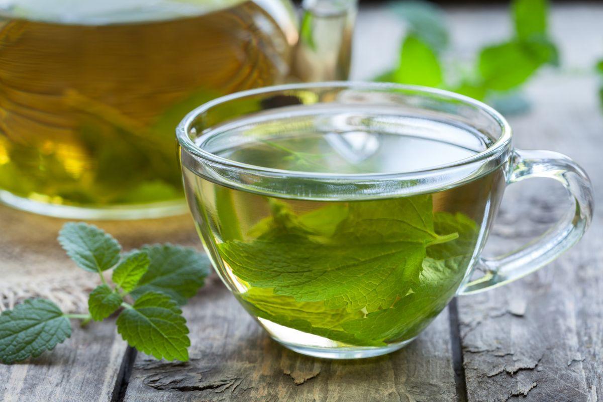 Uống trà mỗi ngày là cách làm đẹp với trà xanh từ bên trong