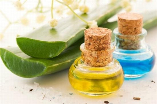 Muốn da căng bóng không xuất hiện nếp nhăn không khó nếu bạn áp dụng thường xuyên công thức làm đẹp bằng lô hội và dầu dừa