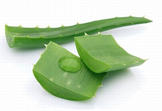 Nha đam có chứa đến loại vitamin có lợi cho sức khỏe