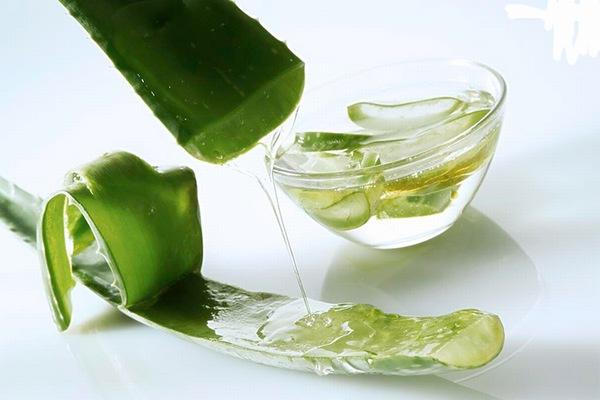 Nha đam có chứa nhiều vitamin và khoáng chất mang đến các công dụng làm đẹp tuyệt vời